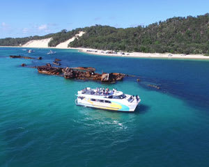 Dolphin Cruise with Tangalooma Wreck Snorkel Tour - Brisbane