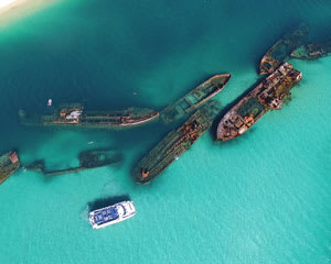 Dolphin Cruise with Tangalooma Wrecks Snorkel Tour - With Transfers From Gold Coast