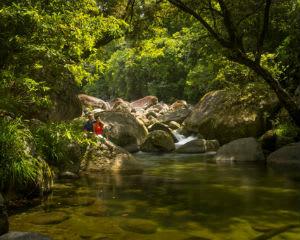 Cape Tribulation, Daintree & Mossman Gorge Guided Tour - Departs Cairns