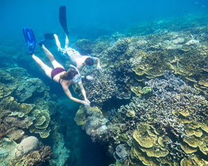 Great Barrier Reef Cruise with Guided Snorkel Tour, Full Day - Cairns