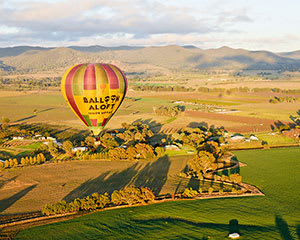 Hot Air Balloon with A La Carte Buffet Champagne Breakfast, 1 Hour - Mudgee