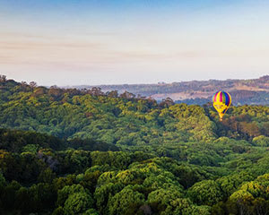 Hot Air Balloon with Breakfast + Award Winning Coffee, 1 Hour - Byron Bay