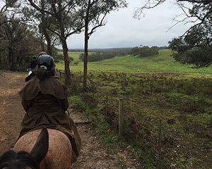 Private Horse Riding Tour for 2 – Great Otway Pub Ride – Great Ocean Road