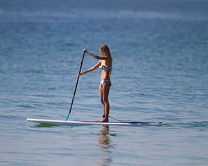 Stand Up Paddle Board Session, 90 Minutes - Bundeena, Sydney