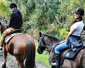 Bushland Horse Ride, 2 Hours - Bunyip State Park, Melbourne - For 2
