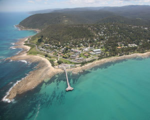 Private Helicopter Flight, 45 Minutes - Great Ocean Road - For 2
