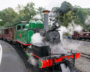 Puffing Billy Steam Train and Healesville Sanctuary Tour - Departs Melbourne