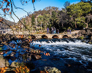 Cataract Gorge Walking Tour, 2.5 Hours - Launceston, TAS