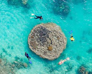 Scenic Flight, Rafting and Swimming, Full Day - Whitsundays