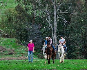 Adults Private Horse Riding Lesson, 1 Hour - Jarrahdale, Perth
