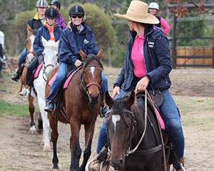 Horse Riding Adventure, 1 Hour - Jarrahdale, Perth - For 2