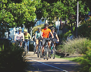 Morning Guided Bike Tour, 4 Hours - Brisbane
