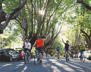 Guided Bike Tour, 2 Hours - Brisbane