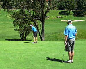 Golf Round of 18 Holes with Cart Hire and Drink - Chatswood, Sydney - For 2