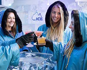 Melbourne Ice Bar Premium Child Entry, Mocktail