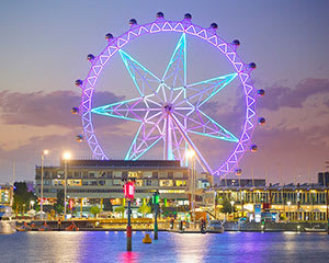 Melbourne Star Observation Wheel Admission - Fly and Dine
