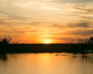 Wetland Wildlife Sunset Cruise, 2 Hours – Darwin