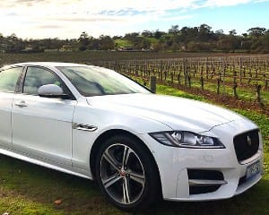 Jaguar XF Tour, 3.5 Hours – Barossa Valley - For 2