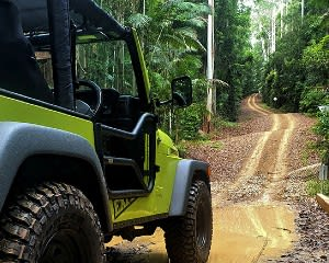 4WD Jeep Hire, Half Day – Sunshine Coast