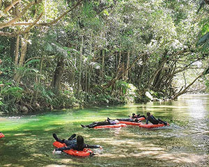 Mossman Gorge Ultimate Tour, Full Day - Departs Port Douglas or Cairns