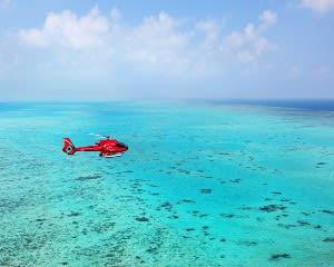 Great Barrier Reef Helicopter Flight, 30 Minutes - Port Douglas