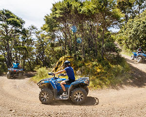Bayview Circuit Quad Bike Tour, 2.5 Hours - Nelson, NZ