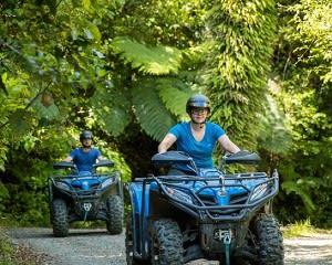 Farm & Forest Quad Bike Tour, 1.5 Hours - Nelson, NZ