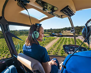 Private Scenic Helicopter Flight, 10 Minutes - Barossa Valley - For 3