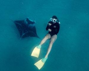 Swim with Manta Rays, Full Day Snorkel Tour - Ningaloo Reef