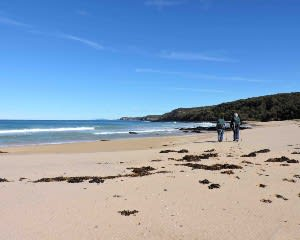 Great South Coast Hiking Trip, 3 Days - Departs Batemans Bay
