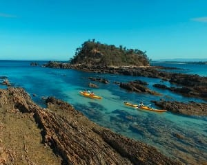Half Day Kayak Tour - Batemans Bay Marine Park