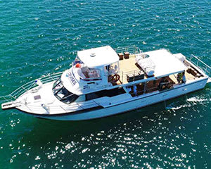 Rottnest Island Cruise with Seafood Lunch - Fremantle