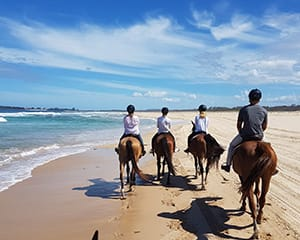 Bush & Beach Horse Ride, 2 Hours - Forster, NSW