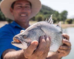 Catch & Release Barramundi Fishing Tour, 1 Hour - Port Douglas
