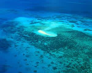 Scenic Flight Over Great Barrier Reef, 40 Minutes - Departs Cairns