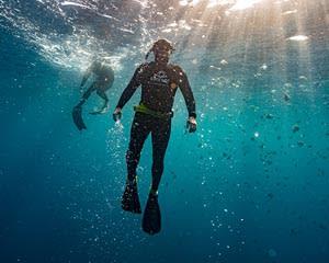 Full Freediving Course, 2 Days - Sunshine Coast
