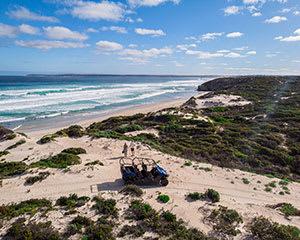 Kangaroo Island Guided Buggy Tour, 2 Hours - Kangaroo Island