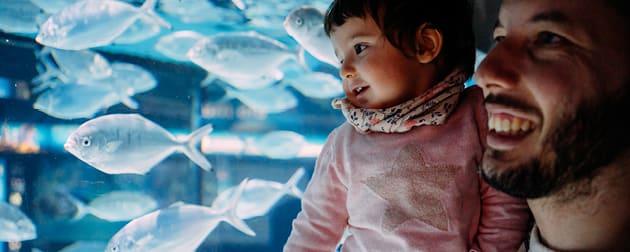 Family Fun with Dad Aquarium