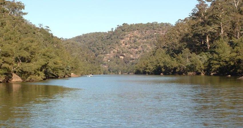 Fishing Trip in Freshwater, Half Day - Sydney