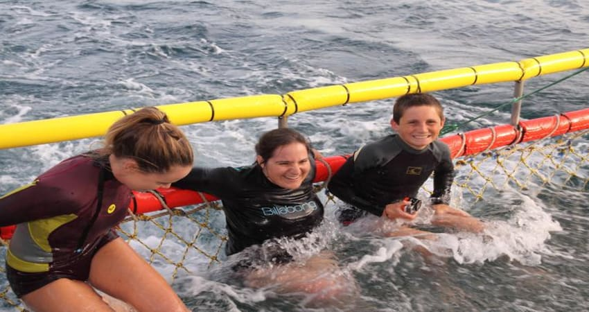 Boom Netting Dolphin Cruise - Jervis Bay