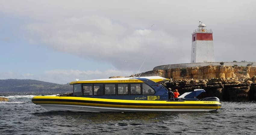 Iron Pot and Betsey Island Cruise, 2.5 Hours - Hobart