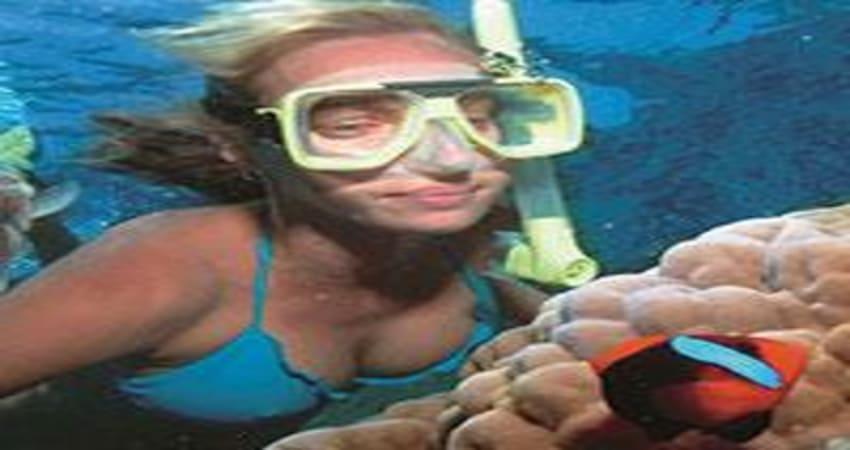Snorkelling on Wave Break Island, Gold Coast