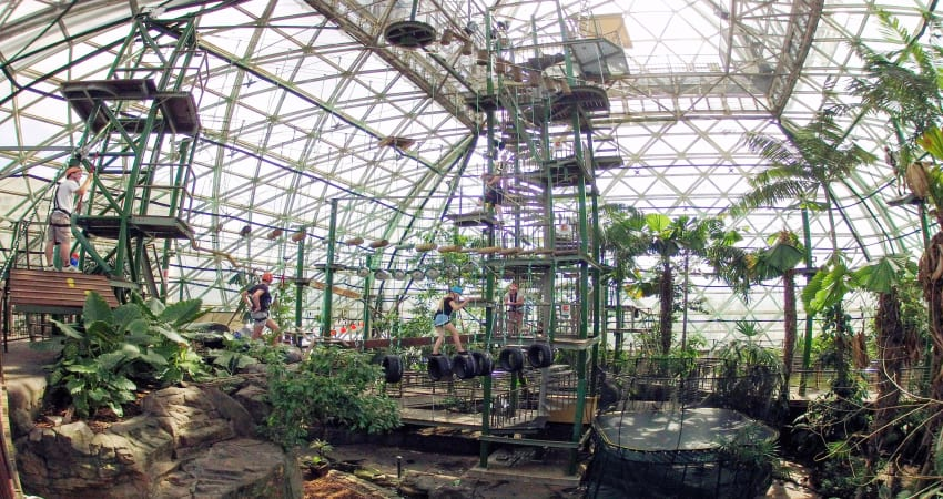 Four ZOOM Activities at Cairns Zoom & Wildlife Dome - Cairns