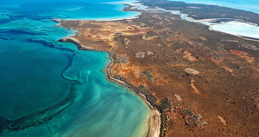 Scenic Flight to Monkey Mia with Dolphin Encounter - Kalbarri