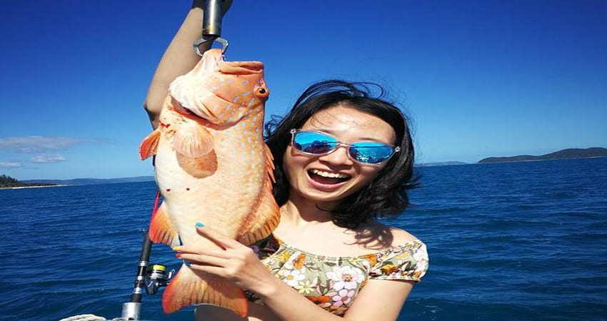 Whitsundays Fishing Charter, Half Day with Transfers - Airlie Beach