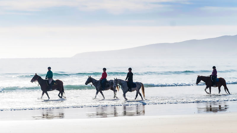 Horse Riding on the Beach, 3 Hours - Bakers Beach, Launceston