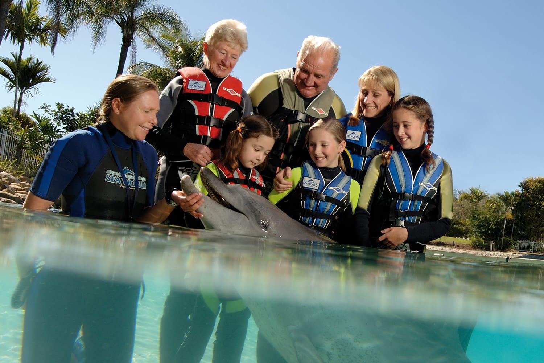 Dolphin Aqua Adventure at Sea World for Child