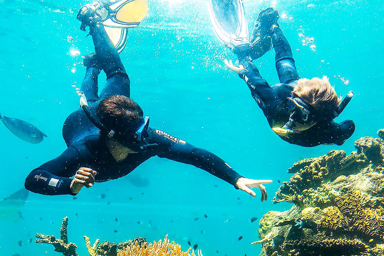 Tropical Reef Snorkel at Sea World
