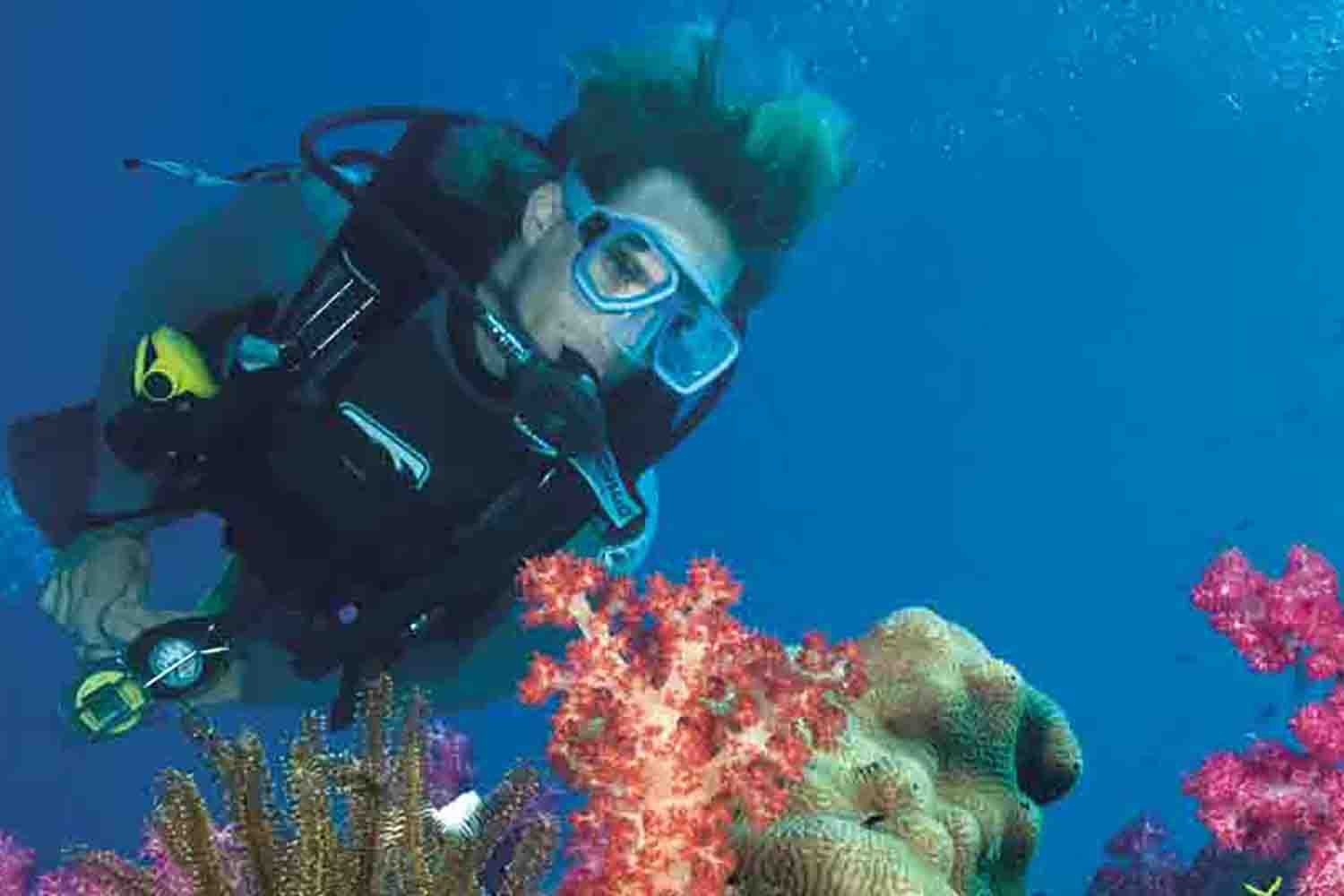 Scuba Diving Introduction with Snorkelling - Gold Coast