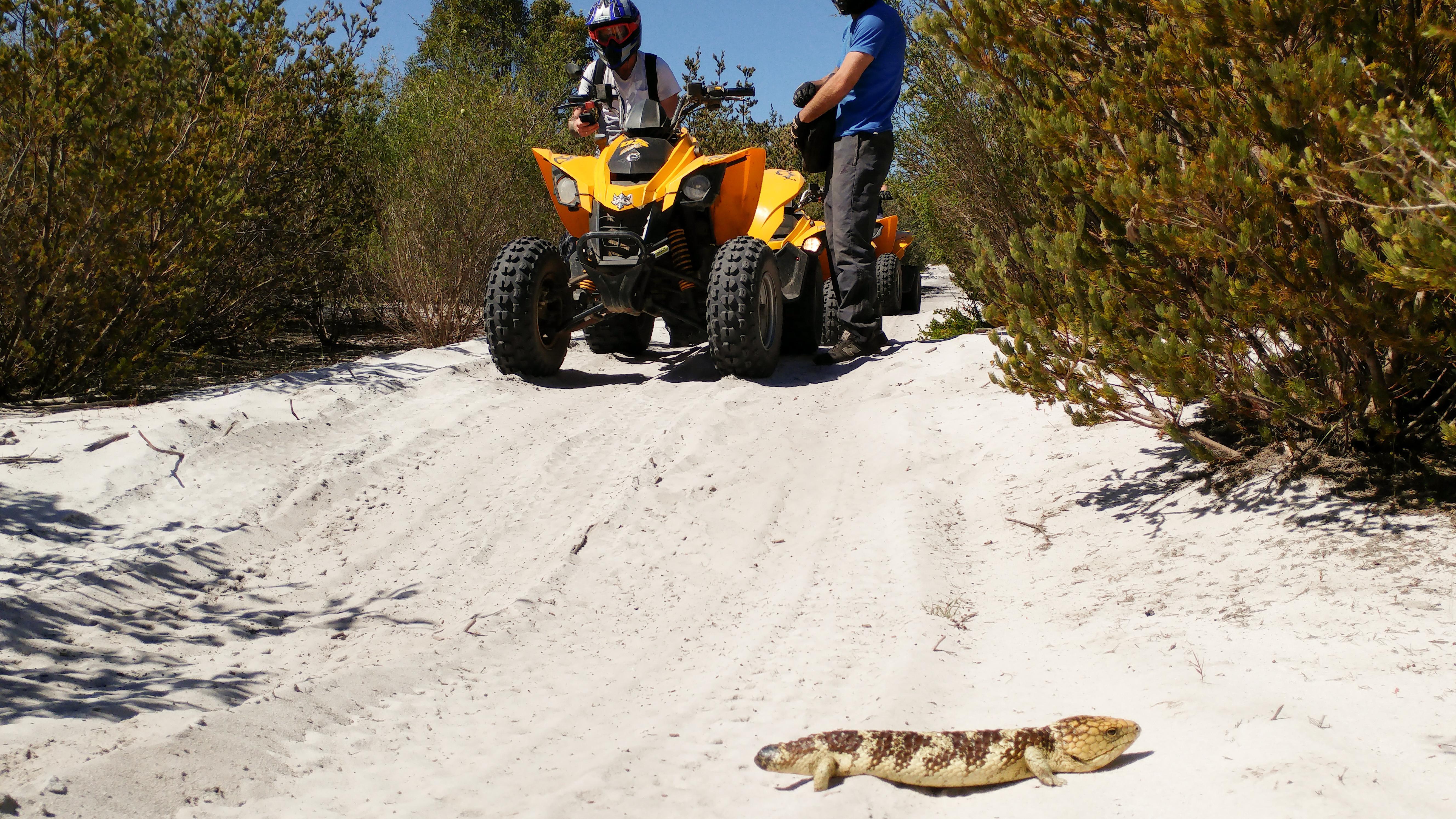 Quad Bike Adventure Tour, 2.5 Hours - Pinjar, Perth